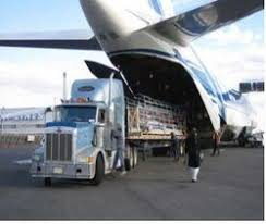 Diploma in International Air Cargo Management